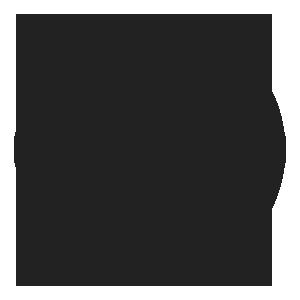 wordpress-b